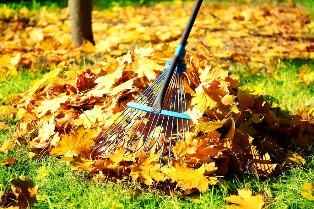 9 Home maintenance Tips for the Fall Season